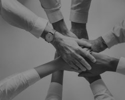 Socialism betonar samarbete